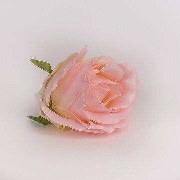 Головка розы полураскрытая крупная персиковая с яркой серединой
