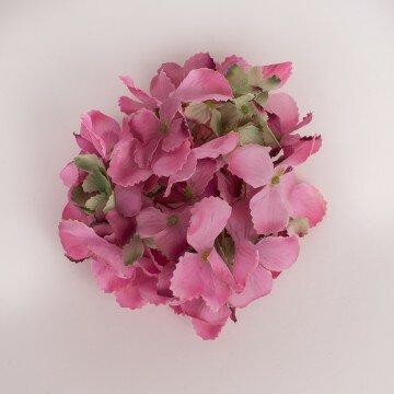 Головка гортензии изящной ярко розовая
