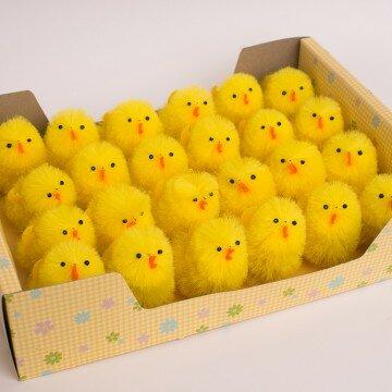 Цыплята средние- упаковка 24шт