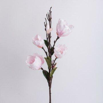 Ветка магнолии розовая