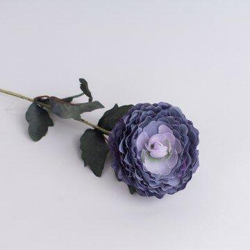 Камелия лиловая