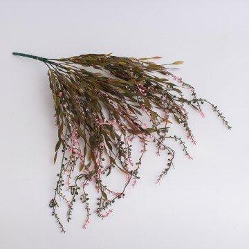 Куст вьющейся травки с розовыми шариками